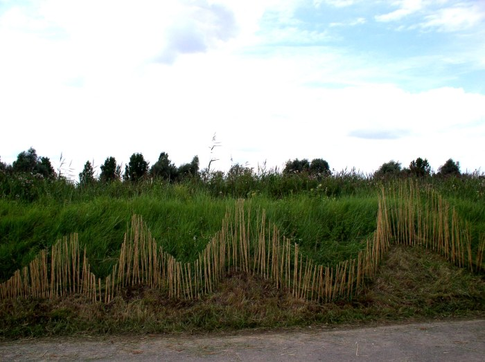 Wave of reed made by all four artists at Reedham Ferry