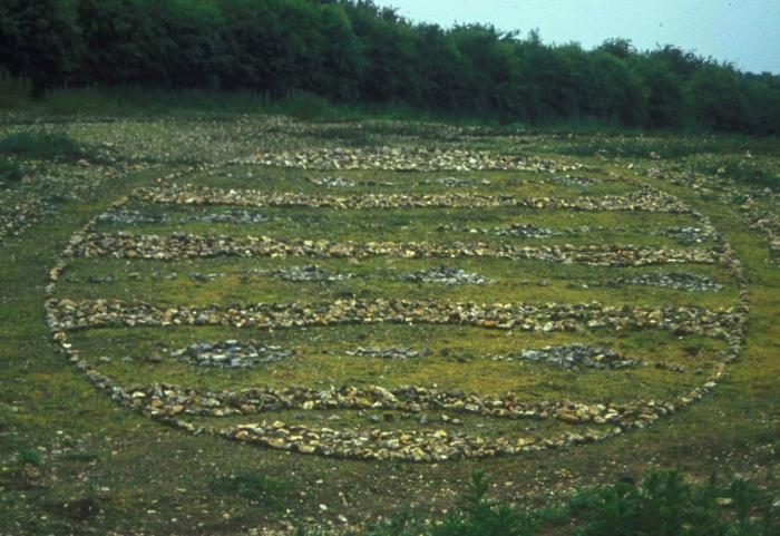Stony Field